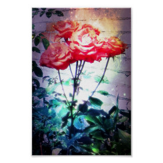 Flame Roses Print