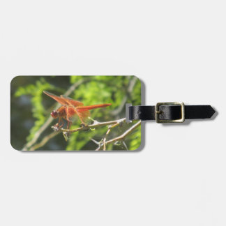 Flame Skimmer Dragonfly Luggage Tag