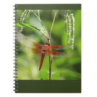 Flame Skimmer Spiral Notebook