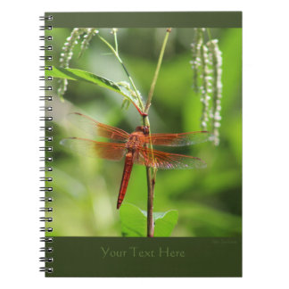 Flame Skimmer Spiral Notebook 2