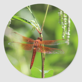 Flame Skimmer Stickers