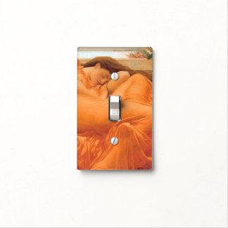 Flameando junio - cambie la placa cubierta para interruptor