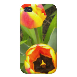 Flamed Tulips iPhone 4 case