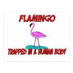 Flamenco atrapado en un cuerpo humano tarjeta postal