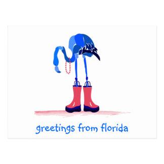 Flamenco azul, saludos de la Florida Tarjeta Postal