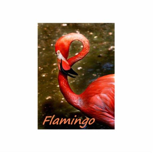 """Flamenco con el texto rosado del """"flamenco"""" escultura fotográfica"""