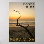 Flamenco de PURA VIDA Playa Póster