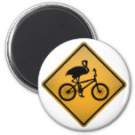 Flamenco en la bicicleta imán
