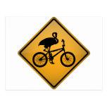 Flamenco en la bicicleta postales