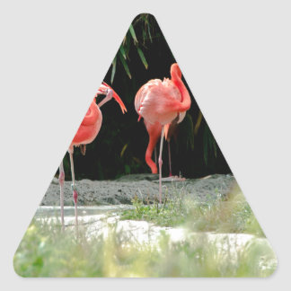 flamenco pegatina triangular