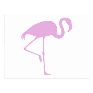 Flamenco rosado clásico postal