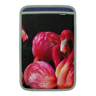 Flamenco rosado de los pájaros del pájaro fundas macbook air