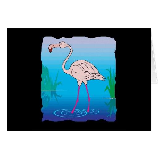 flamenco rosado en agua tarjeta de felicitación