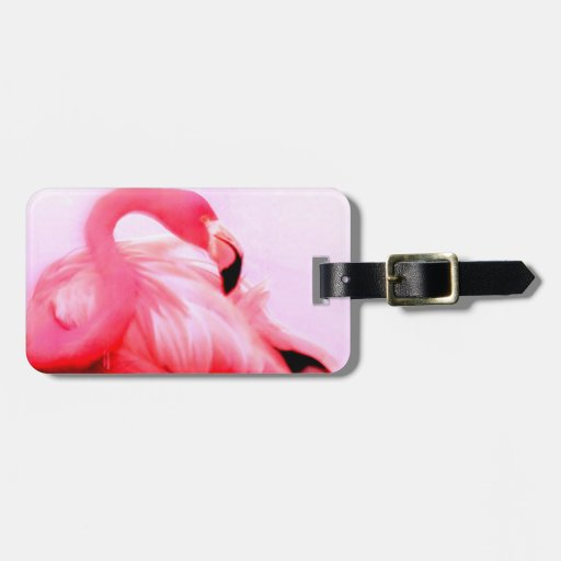 Flamenco rosado etiqueta de maleta