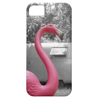 Flamenco rosado iPhone 5 funda