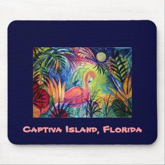 Flamenco rosado - isla de Captiva, la Florida Tapete De Raton