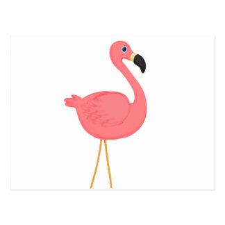 Flamenco rosado lindo postales