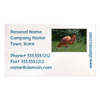 Flamenco rosado perfecto tarjetas de visita