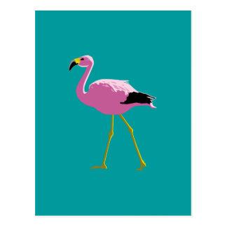 Flamenco rosado postales