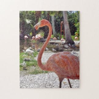 Flamenco rosado puzzle con fotos