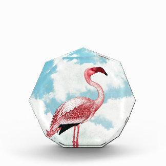 Flamenco rosado y nubes azules
