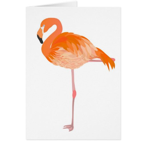 flamenco tarjeta