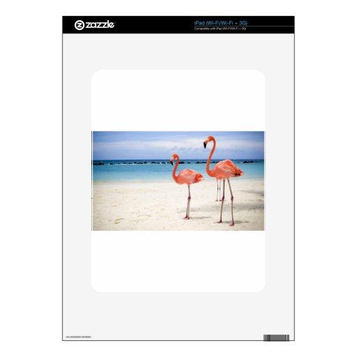 Flamencos en la playa calcomanías para el iPad