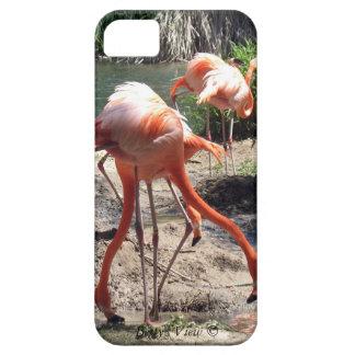 ¡Flamencos! iPhone 5 Case-Mate Cobertura
