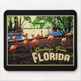 Flamencos rosados de la Florida Alfombrilla De Ratón