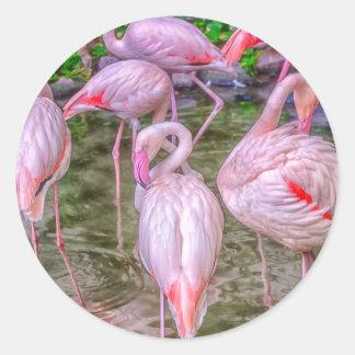 Flamencos rosados pegatina