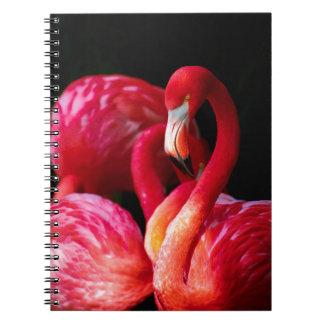 Flamencos rosados vibrantes y fondo negro libro de apuntes con espiral