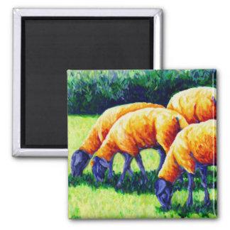 Flamin' Sheep - Sheep Magnet