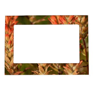 Flaming Flowers Magnetic Photo Frame