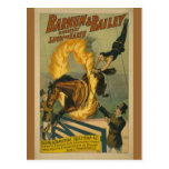 Flaming Horse Circus Poster Postcard