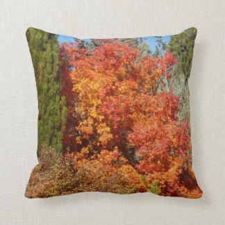 Flaming Orange Bush Pillow
