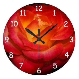 Flaming Red Rose