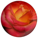 Flaming Red Rose Porcelain Plate