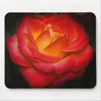 Flaming rose mousepad