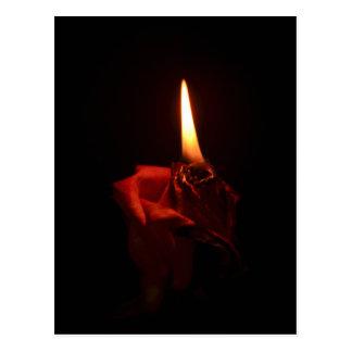Flaming Rose Postcard