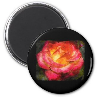 Flaming Rose Watercolor Refrigerator Magnets