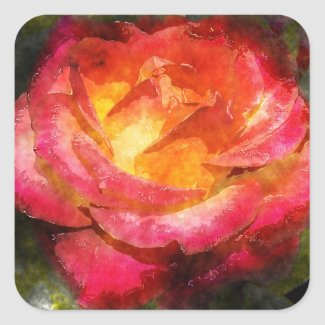 Flaming Rose Watercolor Square Sticker