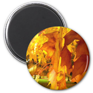 Flaming Yellow 2 Inch Round Magnet