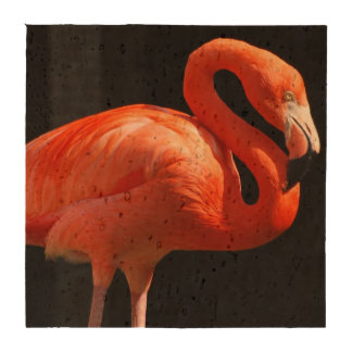 flamingo-125.jpg posavasos