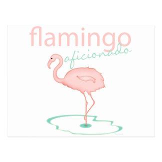 Flamingo Aficionado Postcard