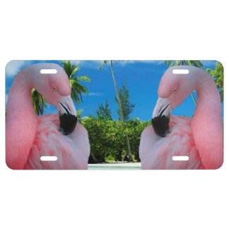 Flamingo and Beach License Plate