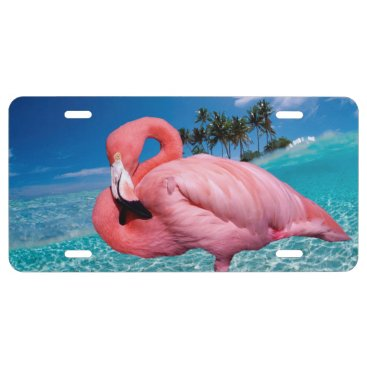 Beach Themed Flamingo and Palms License Plate