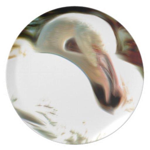 Flamingo Art Dinner Plates