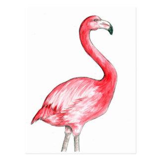 Flamingo Art Post Cards