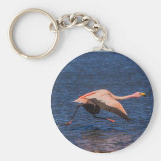 Flamingo Basic Round Button Keychain