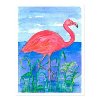 Flamingo Bird Frog Pond Postcard